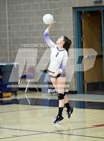 This MaxPreps.com professional photo is from the gallery Arvada West @ Dakota Ridge which features Dakota Ridge high school athletes playing  Volleyball. This photo was shot by Clemy Dalfonso and published on Dalfonso.