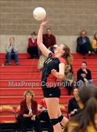 This MaxPreps.com professional photo is from the gallery Lincoln @ St. Francis (CIF SJS D1 Playoffs) which features St. Francis high school athletes playing  Volleyball.