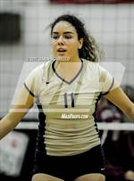 This MaxPreps.com professional photo features Desert Vista high school Jennifer Soto playing  Volleyball. This photo was shot by Darin Sicurello and published on Sicurello.