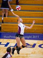 This MaxPreps.com professional photo is from the gallery Marshall @ Brandeis which features Marshall high school athletes playing  Volleyball.
