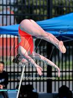 This MaxPreps.com professional photo is from the gallery CIF SJS Girls Diving Finals which features Napa high school athletes playing Girls Swimming. This photo was shot by Gerardo Coronado and published on Coronado.