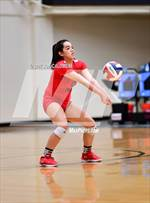 This MaxPreps.com professional photo features Lee high school ARIEL GREEN playing  Volleyball. This photo was shot by Joe Calomeni and published on Calomeni.
