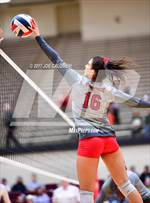 This MaxPreps.com professional photo features Lee high school SAMANTHA MILLER playing  Volleyball. This photo was shot by Joe Calomeni and published on Calomeni.