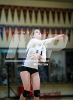This MaxPreps.com professional photo features Napa high school Peyton Mott playing  Volleyball. This photo was shot by Don Lex and published on Lex.