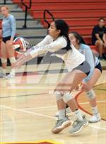 This MaxPreps.com professional photo features Valley Christian high school Keilani Mayo playing  Volleyball. This photo was shot by David Steutel and published on Steutel.