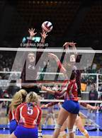 "Photo from the gallery ""Merino vs. Springfield (CHSAA 1A Round 2)"""