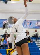 This MaxPreps.com professional photo is from the gallery Archbishop Mitty vs. Sacred Heart Cathedral Preparatory (CIF-CCS Open Div. Semi-finals) which features Archbishop Mitty high school athletes playing  Volleyball.