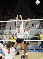 This MaxPreps.com professional photo is from the gallery Rock Canyon vs. Coronado (CHSAA 5A Tie-Breaker) which features Rock Canyon high school athletes playing  Volleyball. This photo was shot by Paul DiSalvo and published on DiSalvo.