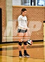 This MaxPreps.com professional photo is from the gallery Crandall vs. Ennis which features Crandall high school athletes playing  Volleyball. This photo was shot by Oladipo Awowale and published on Awowale.