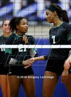 This MaxPreps.com professional photo is from the gallery Carroll @ Hebron which features Carroll high school athletes playing  Volleyball.