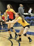 This MaxPreps.com professional photo is from the gallery St. Francis vs St. Mary's (CIF SJS D1 Final) which features St. Francis high school athletes playing  Volleyball.