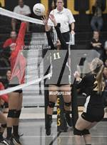 This MaxPreps.com professional photo is from the gallery Savanna @ Sunny Hills which features Savanna high school athletes playing  Volleyball. This photo was shot by Heston Quan and published on Quan.