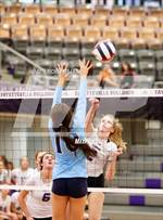This MaxPreps.com professional photo is from the gallery Har-Ber @ Fayetteville which features Fayetteville high school athletes playing  Volleyball. This photo was shot by Richey Miller and published on Miller.