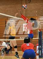 This MaxPreps.com professional photo is from the gallery Mount Tabor @ Parkland which features Parkland high school athletes playing  Volleyball.