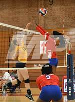 This MaxPreps.com professional photo features Parkland high school Ahlysia Overton playing  Volleyball. This photo was shot by Robert Maltzahn and published on Maltzahn.