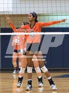 This MaxPreps.com professional photo is from the gallery Clark @ Brandeis which features Brandeis high school athletes playing  Volleyball.