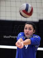 This MaxPreps.com professional photo is from the gallery Santa Barbara vs. Analy (Archbishop Mitty Invitational Tournament) which features Analy high school athletes playing  Volleyball.