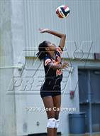 This MaxPreps.com professional photo is from the gallery MacArthur [Douglas] vs Brandeis (Paul Taylor Gym) which features Brandeis high school athletes playing  Volleyball.